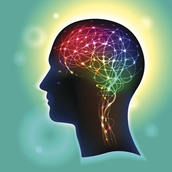 Storytelling and Brain Science: This Is Your Brain on Story
