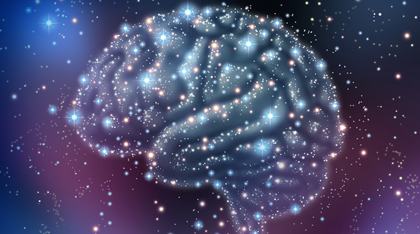 Developing the Learner's Brain