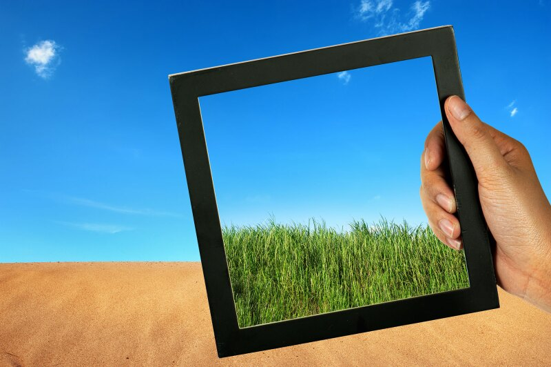 compare desert and green grass in black wood frame