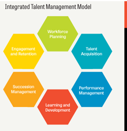 Examining Integrated Talent Management