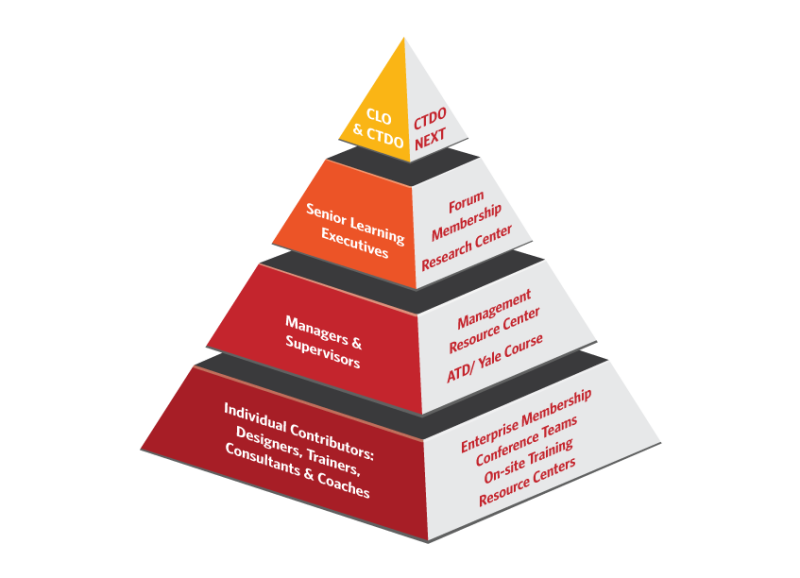 Enterprise Pyramid