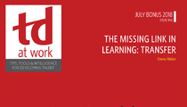 The Missing Link in Learning: Transfer