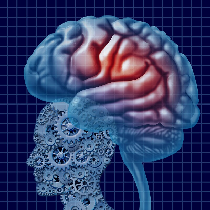 Neuroscience 1