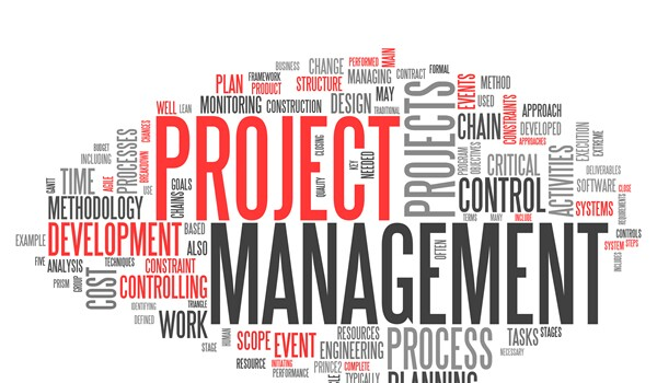 Project Management For Learning Professionals Certificate